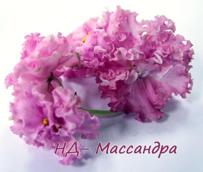 НД-Массандра