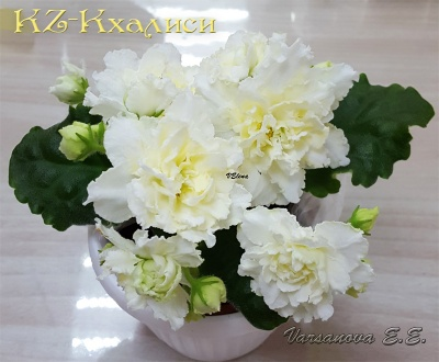 KZ-Кхалиси